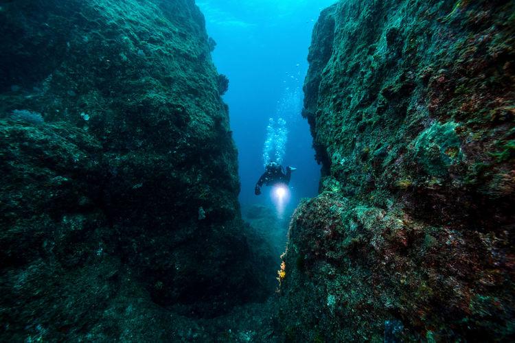 Woman scuba diving undersea