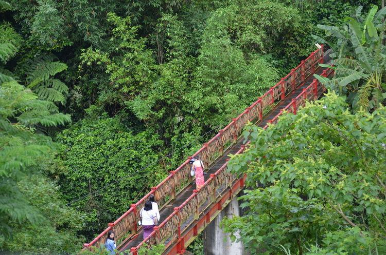 red bridge Xinbeitou Taiwan Bridge Red Green Jangle People Travel Traveling