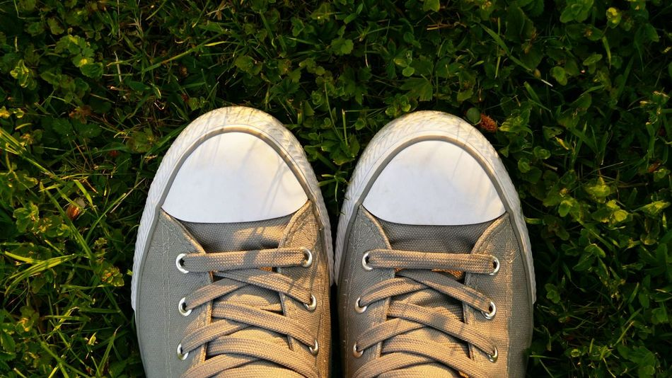 Grass Shoe Sneaker Sneakers Vans High Angle View Pair Pair Of Shoes Outdoors Close-up Close Up Shoes Out Of The Box Grey Shoes Grey EyeEmNewHere Low Section Shoelace Soccer Shoe