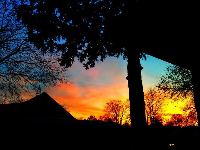 From my back proch. Sunset Silhouette Tree Sky Outdoors Check This Out Pretty♡ House From My Porch Sunsetporn