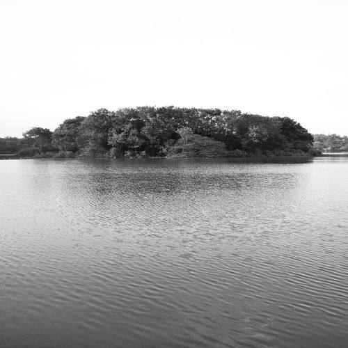 Hebbal lake , a sight to enjoy First Eyeem Photo Everything In Its Place Pastel Power Lake Calm Scerenity Black And White