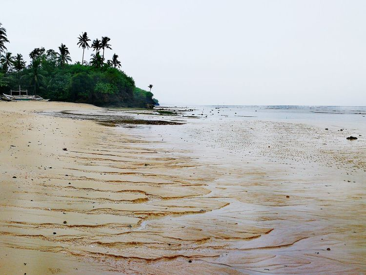 LOWTIDE Beach Horizon Over Water Sea Beauty In Nature Landscape Nature Sand Scenics No People Vacations Water Outdoors Day Tranquility Mobilephotography Portrait EyeEm Best Shots HuaweiMate9Photography EyeEm Gallery StarfishBeSoCute EyeEmNewHere EyeEmSelect EyeEmBestPics Whitesand Lowtide