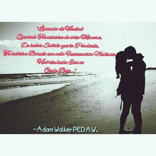 Adamwalker PEDAW LiaBelikov Books ♥