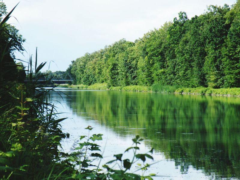 Landschaft Landschaften Landscape Landscape_photography Bäume Fluss River Kanal Wasser Wasserspiegelung