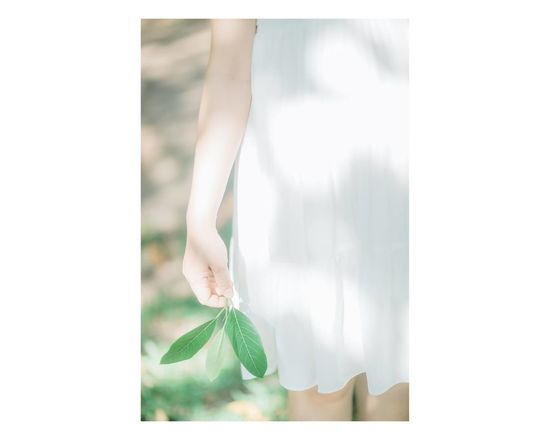 People Hands Japan Photography China Photos White Alone Pieces Of Me Leaf 🍂 Direct Light Paterns In Nature Minimalism Green Leaves Greenlife Green Grass Green Color Chanhxanh Collection