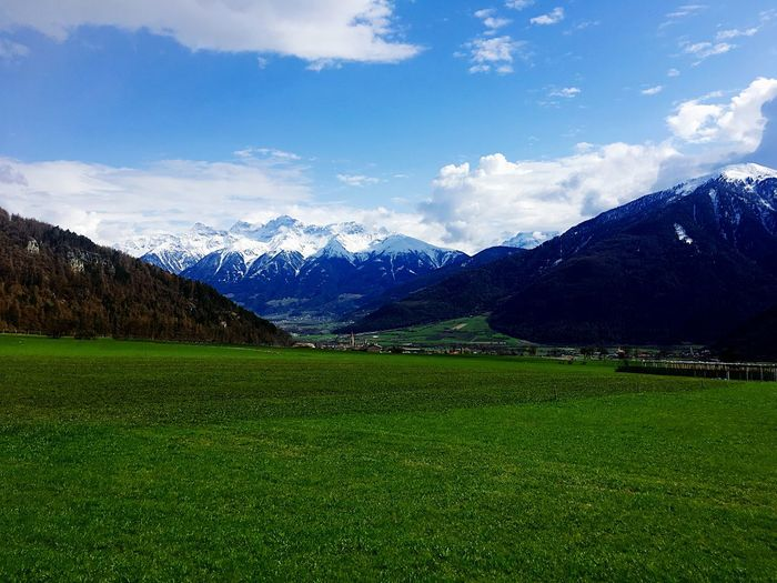 Alps Plant Sky