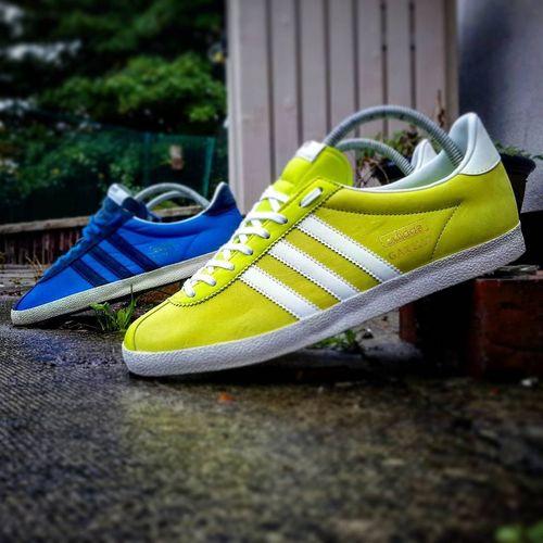 Gazelleog Adidasgazelleog Gazelleog0.a39 Adidas1972 Aditrainerlads