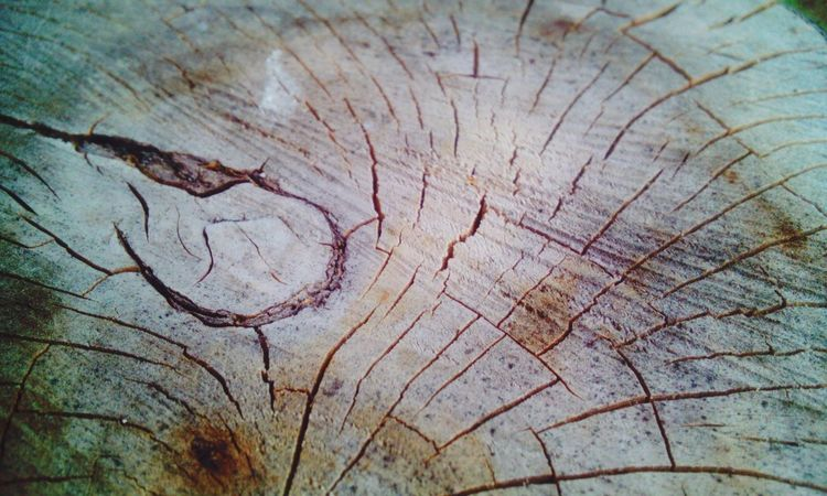 Wood Art Macro Taking Photos Check This Out Wodden Texture Pattern, Texture, Shape And Form Pattern Of Nature