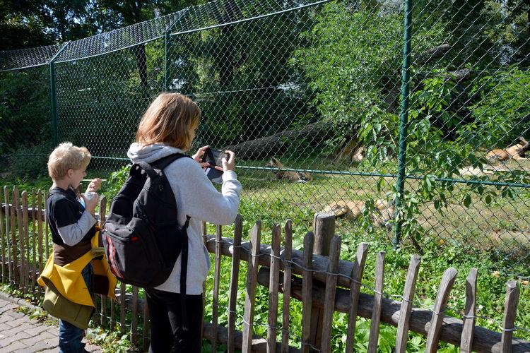 Children in zoo