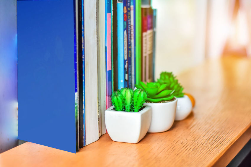 Book for reading Books Read Wood Blue Book Choice Close-up Day Green Color Indoors  Large Group Of Objects Multi Colored No People Table Variation Wood - Material