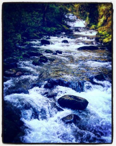 sweetcreek falls, mapleton oregon Douglas County Nature Photography Great Day! Hiking Adventures