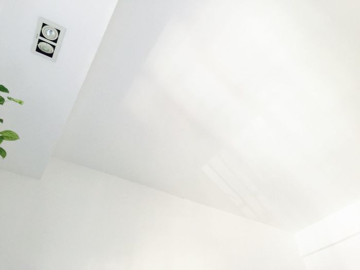 A new perspective White Light Light And Shadow Roof Angles Plant Green Ray Of Light Cude Third Dimension Slur Vague New Perspective Of Life  Home Study Wall White Wall Window Showcase: January Good Mood Bueatiful View Relaxing