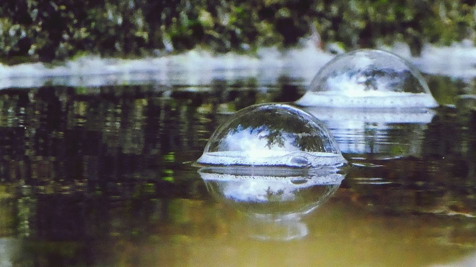 I always carry a spare bubble in case the one I live in now bursts.... Reflection Water Nature Outdoors Bubble Tiny Bubbles Big Bubbles Living In A Bubble Bubbles In WaterNo People Day Simple Beauty Simple Quiet Love Nature Low Angle View Sky And Clouds In A Bubble Perspectives On Nature
