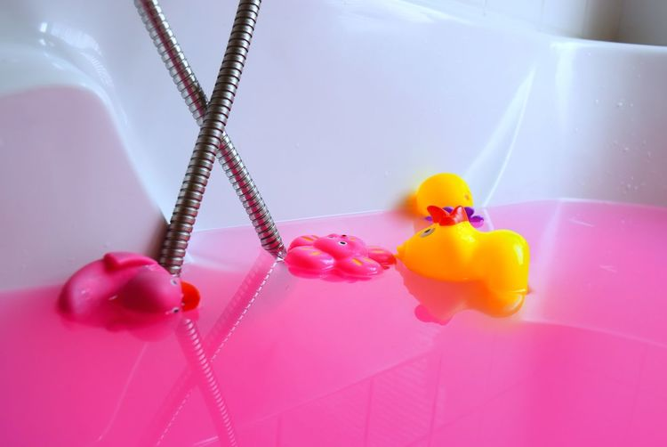 Indoors  Bathtub Bath Bomb Bath Bathroom Art Pink Pinkwater Duck Canard Pato Eau Rosa Multi Colored Playtime Nofilter EyeEmNewHere Second Acts