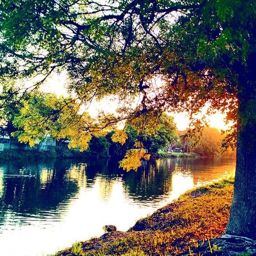 Good morning, friends! From my short 2-miler Morningrun Sunrise Instagood Inst yellow reflections