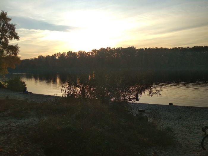 Озеро Закат Лес деревья Природа сонце лес и природа EyeEm Selects вода💧 сонце☀ озеро Reflection Wetland Swamp