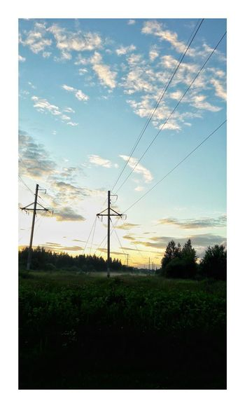 Cable Electricity  Power Line  Power Supply Sky Fuel And Power Generation Cloud - Sky Electricity Pylon No People Connection Tree Technology Field Telephone Line Outdoors Nature Agriculture Day Rural Scene Scenics Tree Adult Illuminated Electricity  Agriculture
