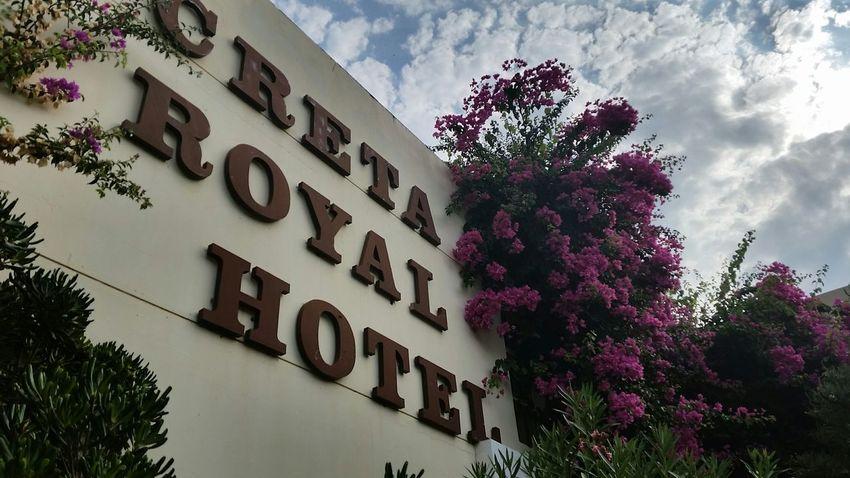 Skaleta Crete Skaleta Crete Greece Creta Royal Hotel Hotel Crete Royal