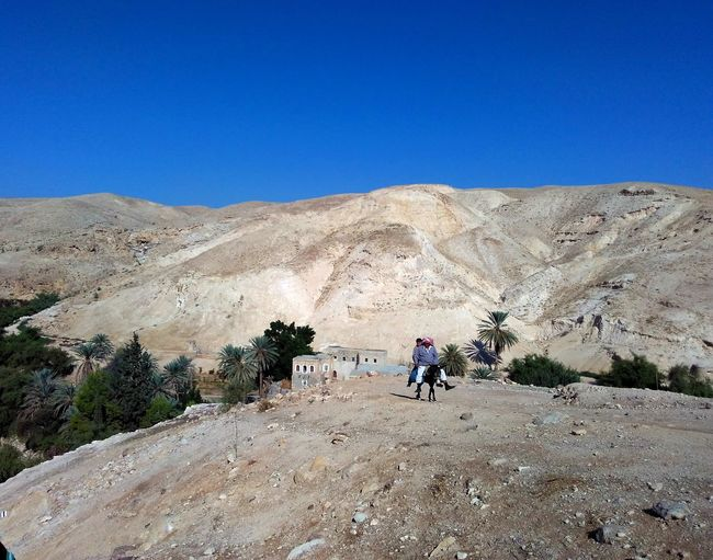 Beduin Desert Palestine Palestinian Territory Travel Adventure Beauty In Nature Clear Sky Desert Dunkey Landscape Lifestyles Men Mountain Nature One Person Outdoors Real People