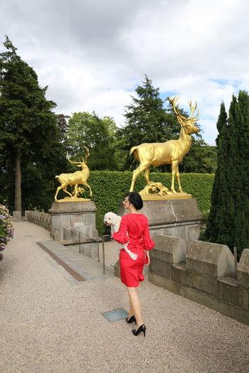 Burg Castle Love Photoshoot Germany One Animal Sculpture Togerherness