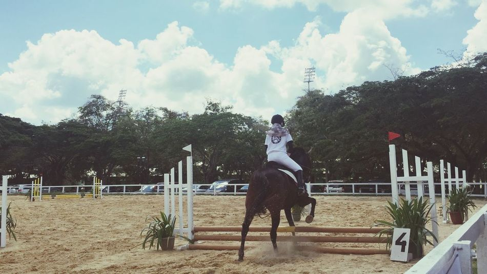 Me. Horse Showjumping Sky Clouds And Sky Equestrian