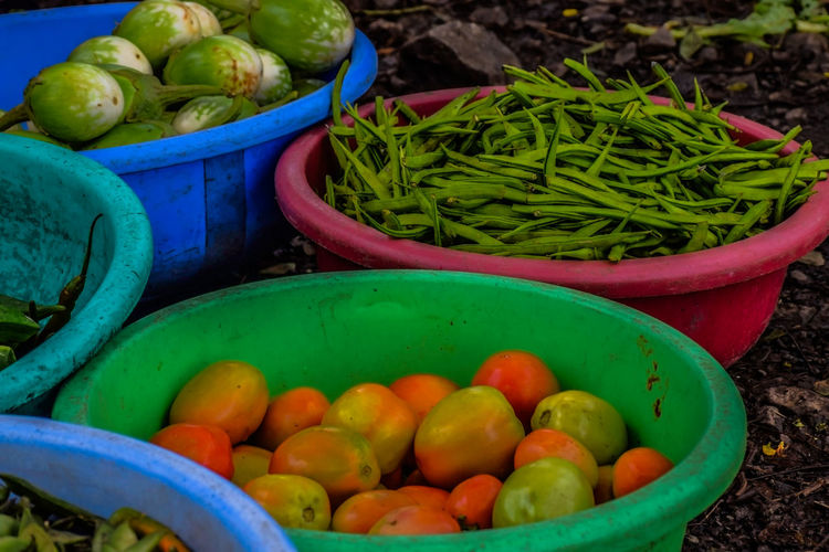 Healthy and organic vegetables grown in the backyard stock photo
