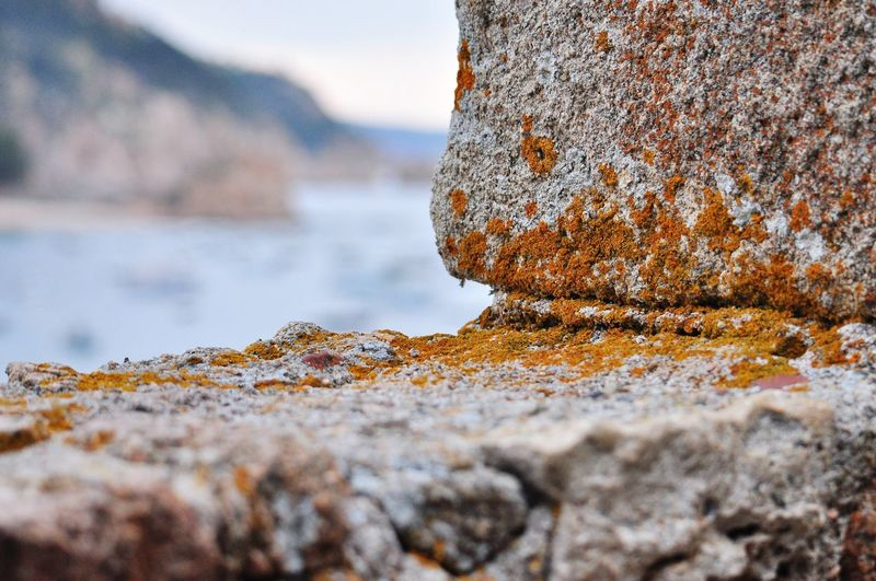Close-up of rusty metal on rock