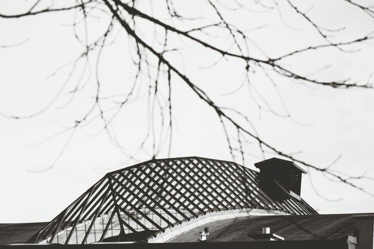 Rooftop Blackandwhite