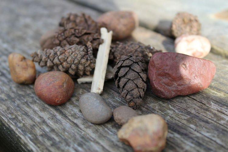 Close-up of dried pinecones and stones on wooden surface
