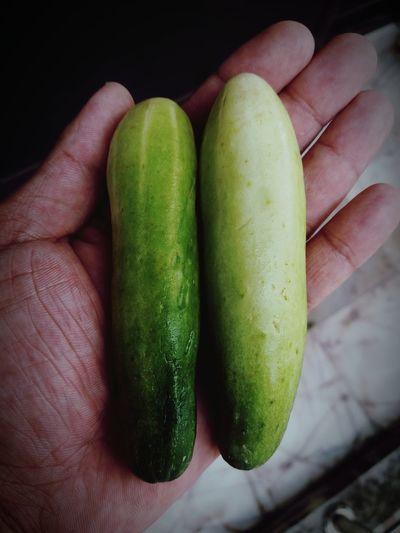Close-up of hand holding vegetables