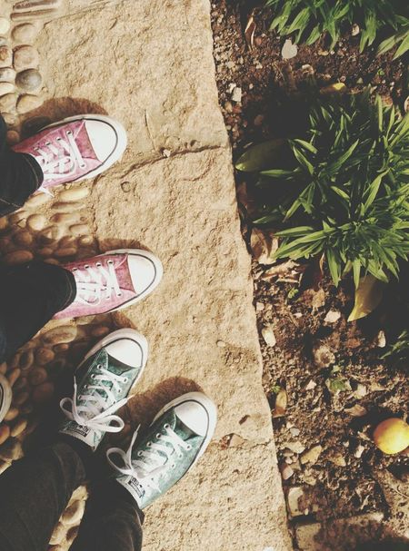Shoe Personal Perspective Canvas Shoe Twins Coincidence Diferent Colours Out Of The Box Sneakers