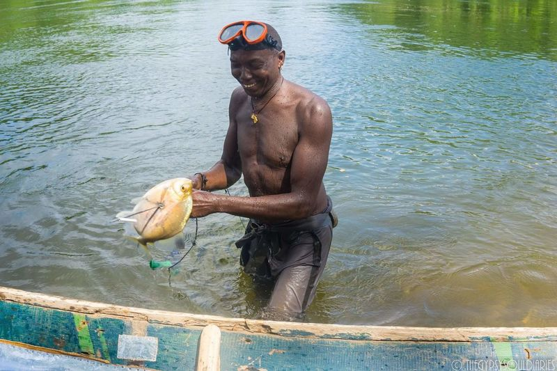 Catching Piranhas Water River One Man Only Day Real People Nature Wet Fishing Time Piranha Piranha In Suriname Piranha Suriname Anani Strand Suriname Suriname River Piranhas Suriname River
