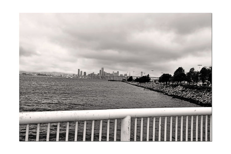 Views From Middle Harbor 3 Port Of Oakland, Ca. Shoreline Park Oaklands Long Wharf Harbor Waterfront San Francisco Skyline Bay Bridge Fishing Pier San Francisco Bay Heavy Clouds Monochrome_Photography Monochrome Water Black & White Black & White Photography Trees Black And White Black And White Collection  Rock-lined Shore