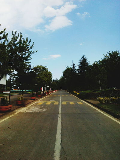 Empty road by trees in city against sky