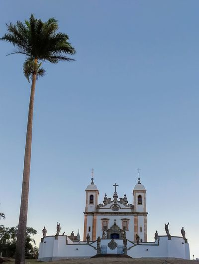 EyeEmNewHere Building Church Church Architecture Aleijadinho Baroque Style Baroque Architecture Baroque Tree Palm Tree Clear Sky Place Of Worship City History Religion Sky Architecture