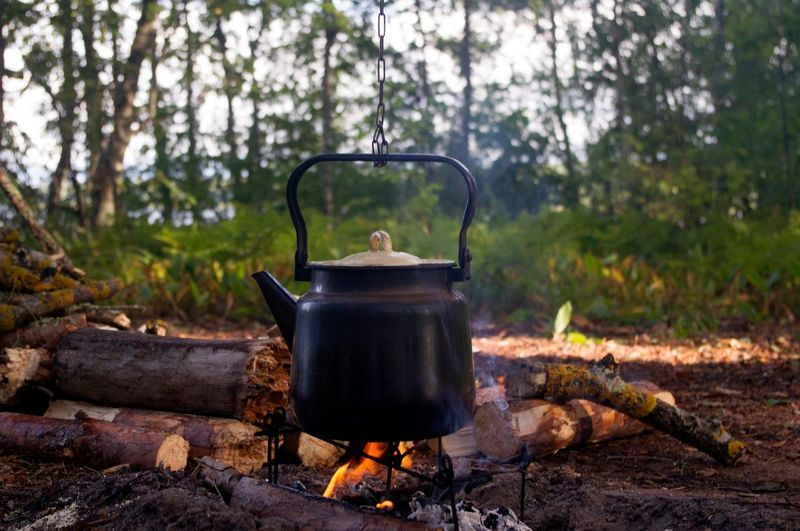 Close-up of kettle on campfire in forest
