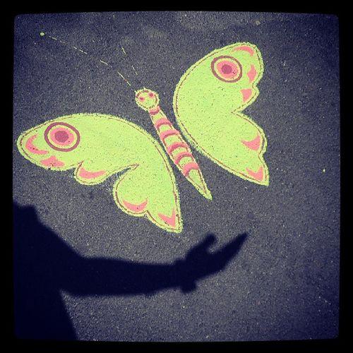 Neuch âtel Papillon Swiss