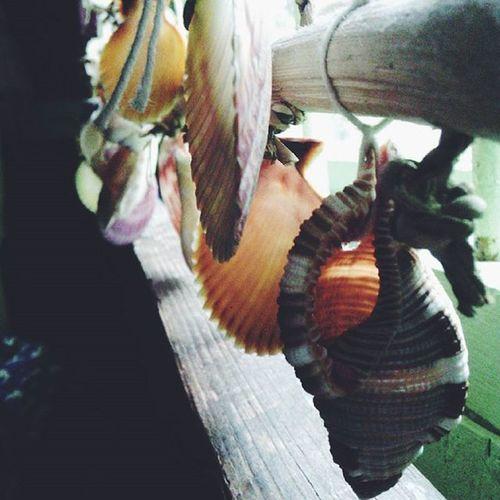 What boredom does to me.. 🐚 VSCO Artistic Craftsmanship  Vscogood TaongBahay VSCO Vscocam VSCO Seashells Vscocam