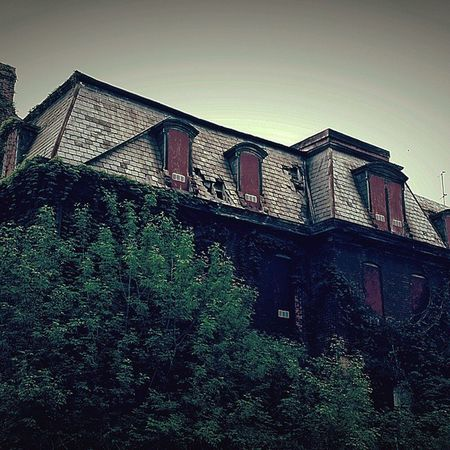 Willard Asylum Wiilardstatehospital Abandoned Abandonmentissues Spooky Atmosphere Hauntedasylum Paranormalactivity