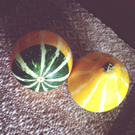 かぼちゃ 鑑賞用