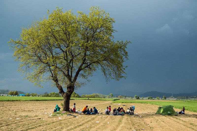 People sitting under tree on landscape