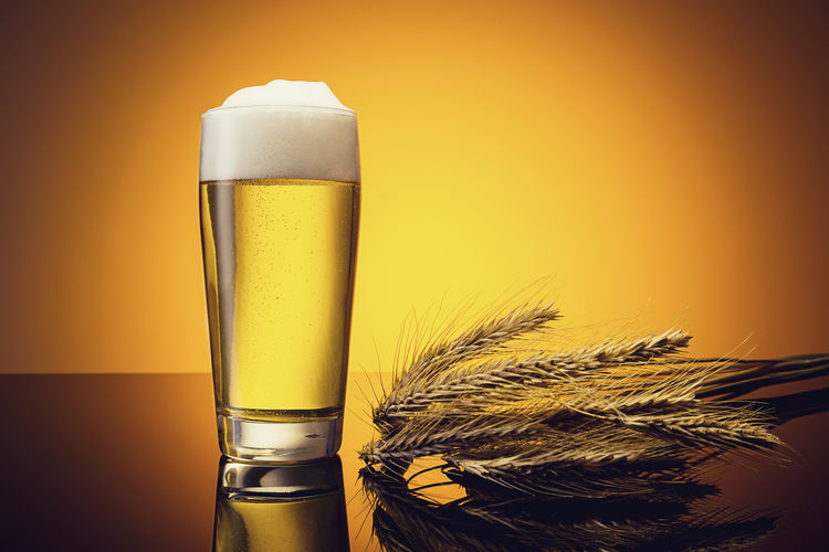 Gold Fresh beer with corn ears Beer Beverage Food And Drink Froth Gold Alcohol Beauty In Nature Beer Time Cereal Plant Close-up Corn Day Drink Food Food And Drink Freshness Frothy Drink German Beer Grain Nature No People Pils Studio Shot Sunset Yellow