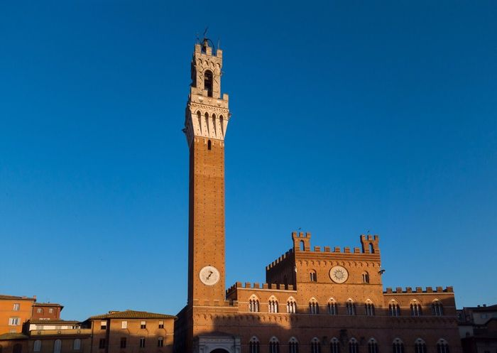 Architecture Building Exterior Built Structure History Tower Clock Tower Clear Sky Sky Travel Destinations Blue Travel Piazza Del Campo Piazza Del Campo. Siena Torre Del Mangia Siena Italy 🇮🇹 Italia Siena, Italy Tuscany EyeEmNewHere Historic Architecture No People Outdoors