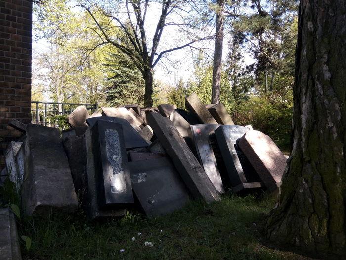 Graveyard Grave Stones Germany Grave Stone Leipzig Abandoned Letzte Ruhe Aufgelassen Cemetery Friedhof Grabsteine Grabstein Rip