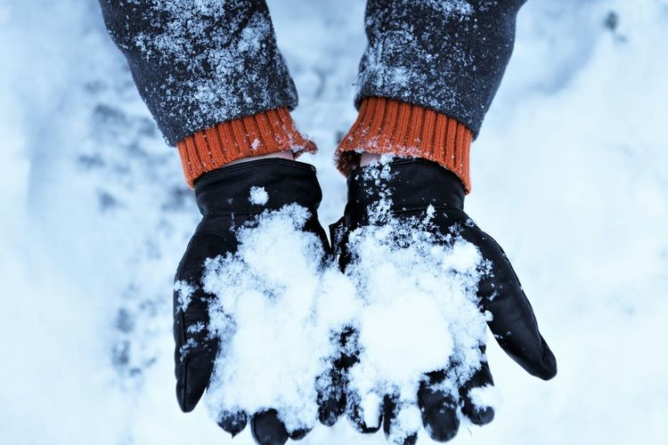 High angle view of person holding on snow