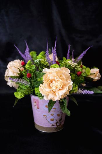 Close-up of roses in vase against black background