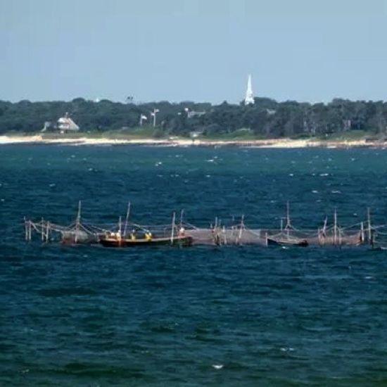 Fisherman working the nets Fishermen Fishnets Ocean Cape Cod Chatham Beach