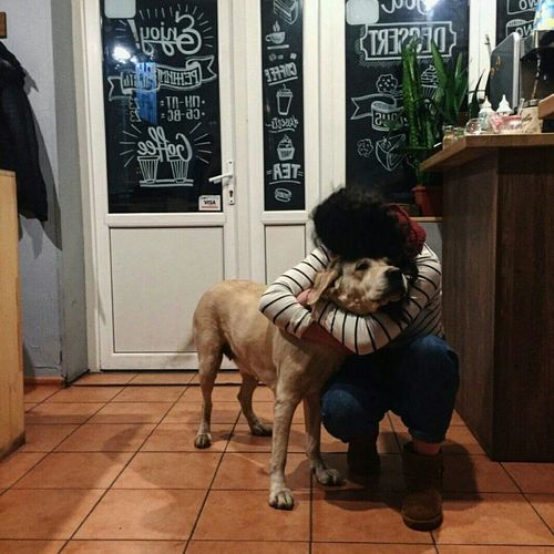 Cafe Dog Love Dog Coffee Time Pets Orthographic Symbol Day Happiness Real People