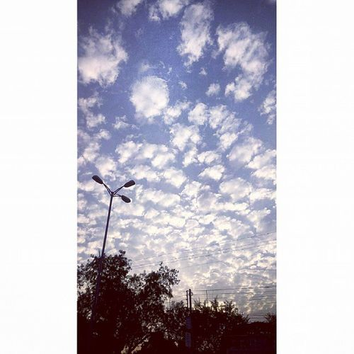 Dramatic Clouds Shadeofblue Beautiful evening indore :)