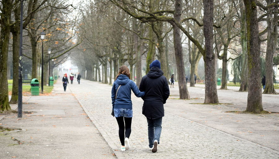 Couple Day Love Park Path Treelined Trees Walking